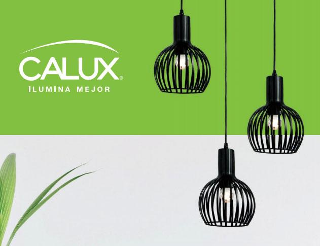 calux1