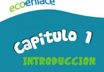 capitul-1-750x647-1