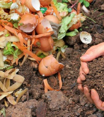 compost-pile-e1519732078727